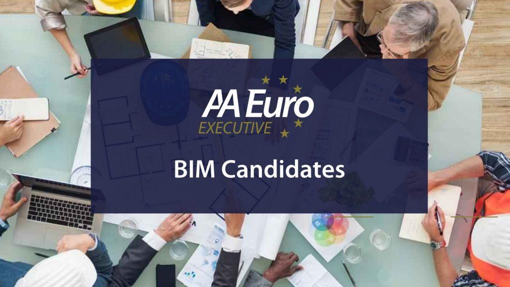 BIM, BIM Professionals Required 2020, AA Euro Group Ltd.